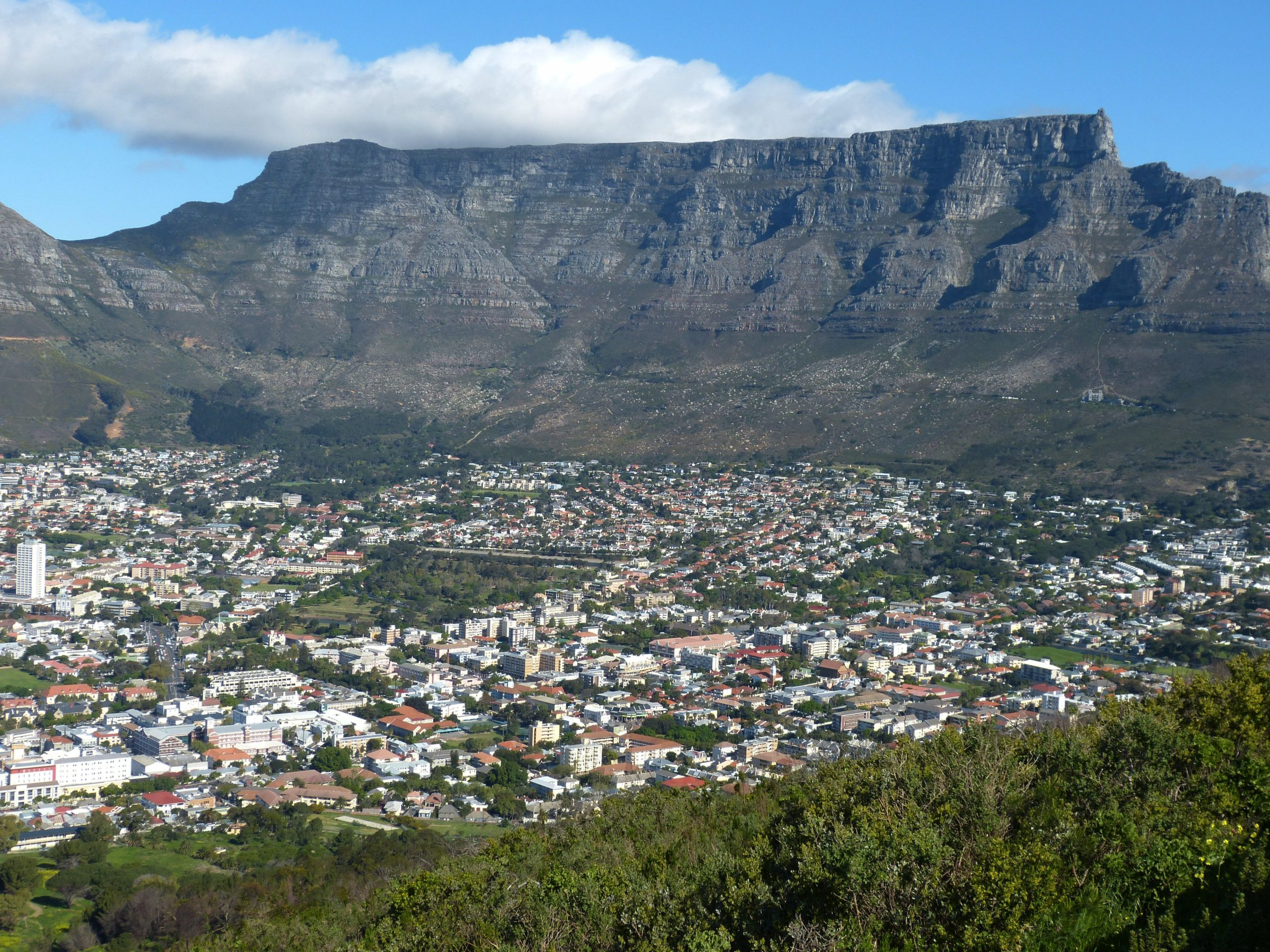 5 Unique Things to Do in Cape Town