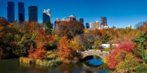 New York – autumnal cycling around New York's iconic Central Park, USA