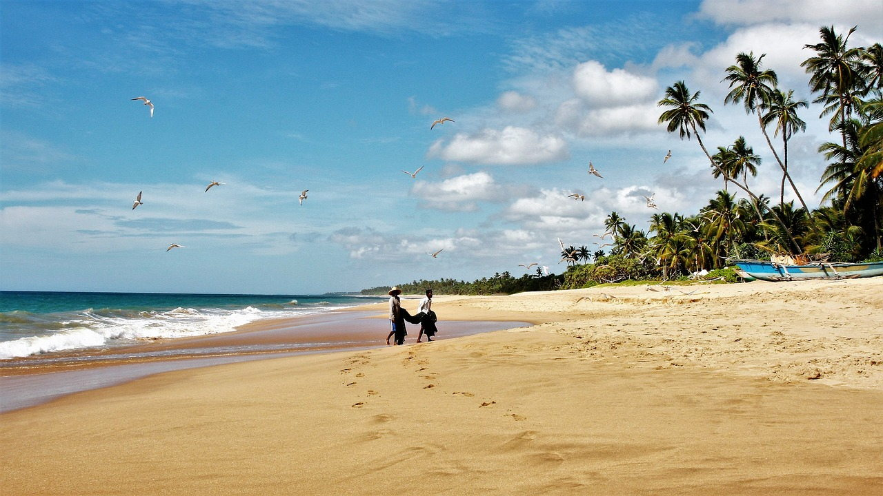 You are currently viewing When is the best time to visit Sri Lanka