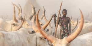 Soul of Africa photo competition winners