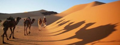 Ten Reasons To Visit The Sahara Desert
