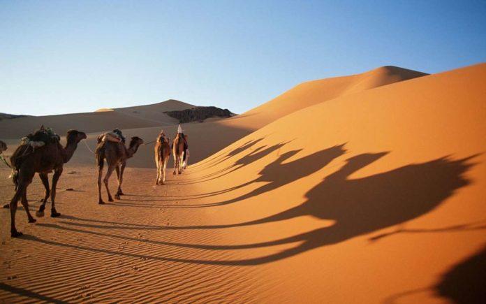 Ten Reasons To Visit The Sahara Desert