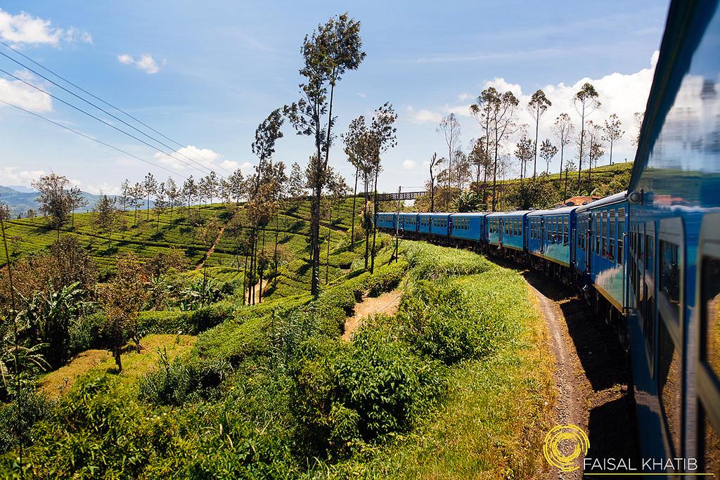 You are currently viewing 5 Must Do Things in Nuwara Eliya, Sri Lanka – Beyond Tea Plantations