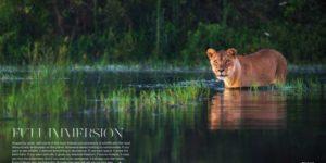 Full immersion – Travel Africa Magazine