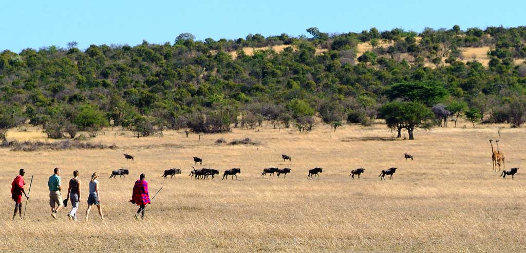 You are currently viewing Keep conservation going – Travel Africa Magazine