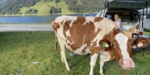 Road Trip to Hucking, Franking & Fucking by Camper Van in Austria