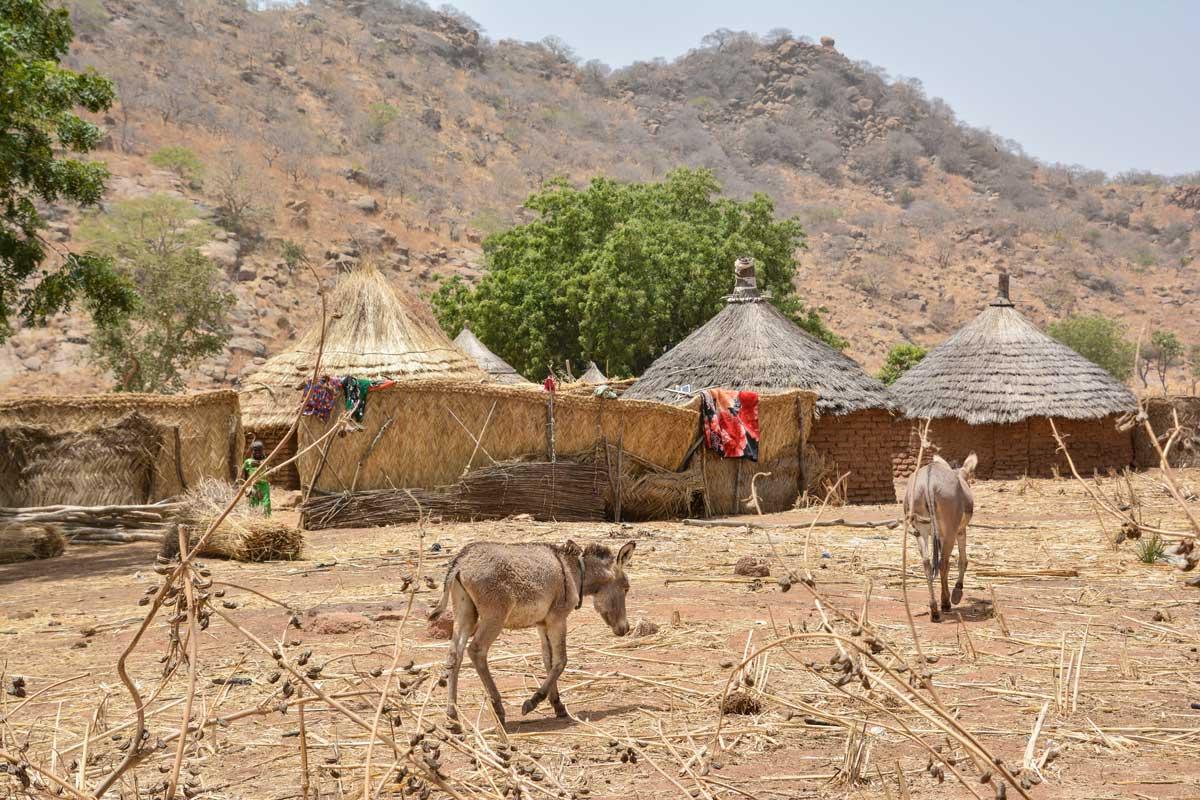 An inconvenient truth – Travel Africa Magazine