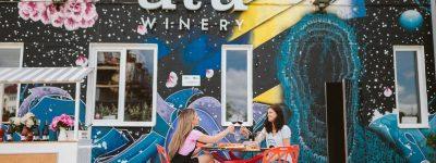 3 Wine Tourism Breaks in Europe