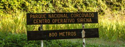 Corcovado National Park Hike: A Jungle Hike for the Whole Family
