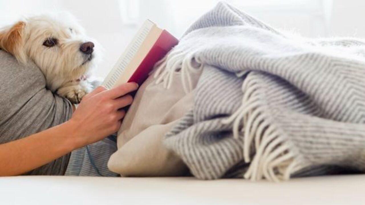 Bookworms rejoice! Explore fascinating cities through Kimpton Book Club